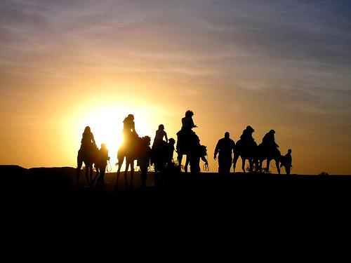 Cammellata nel deserto tunisino al tramonto