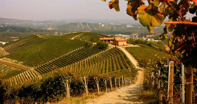 Itinerario nella Langa del Moscato: ancora più splendida in autunno