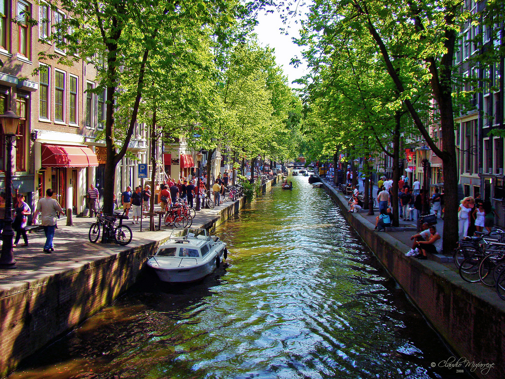Escursioni nei dintorni di Amsterdam: Flevoland e le sue maggiori attrazioni