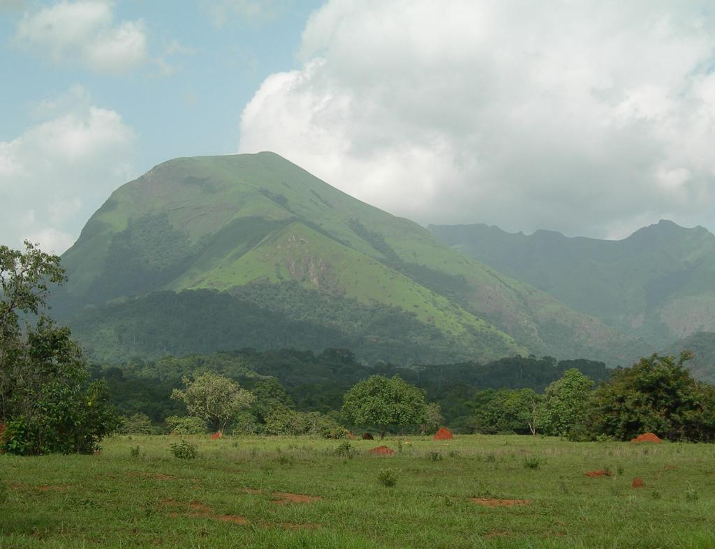 Veduta della Riserva naturale integrale del Monte Nimba (Costa d'Avorio) #fotospettacolari