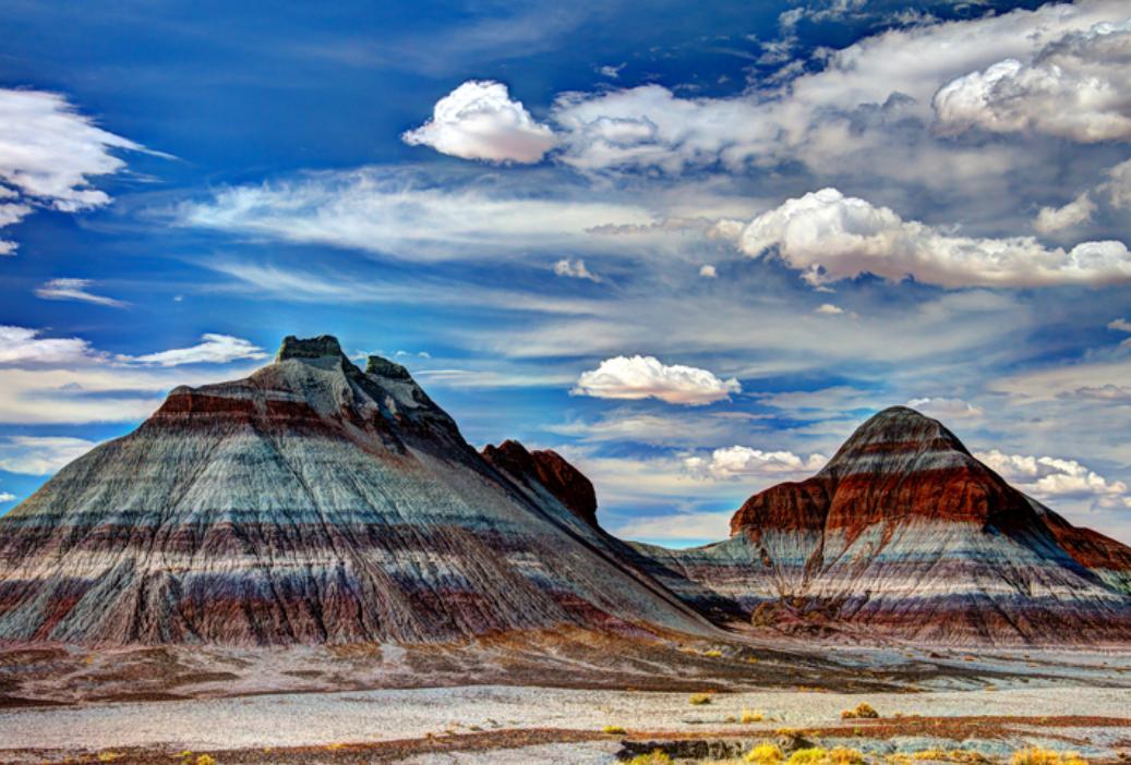 Petrified Forest National Park – uno strabiliante scenario naturale in Arizona