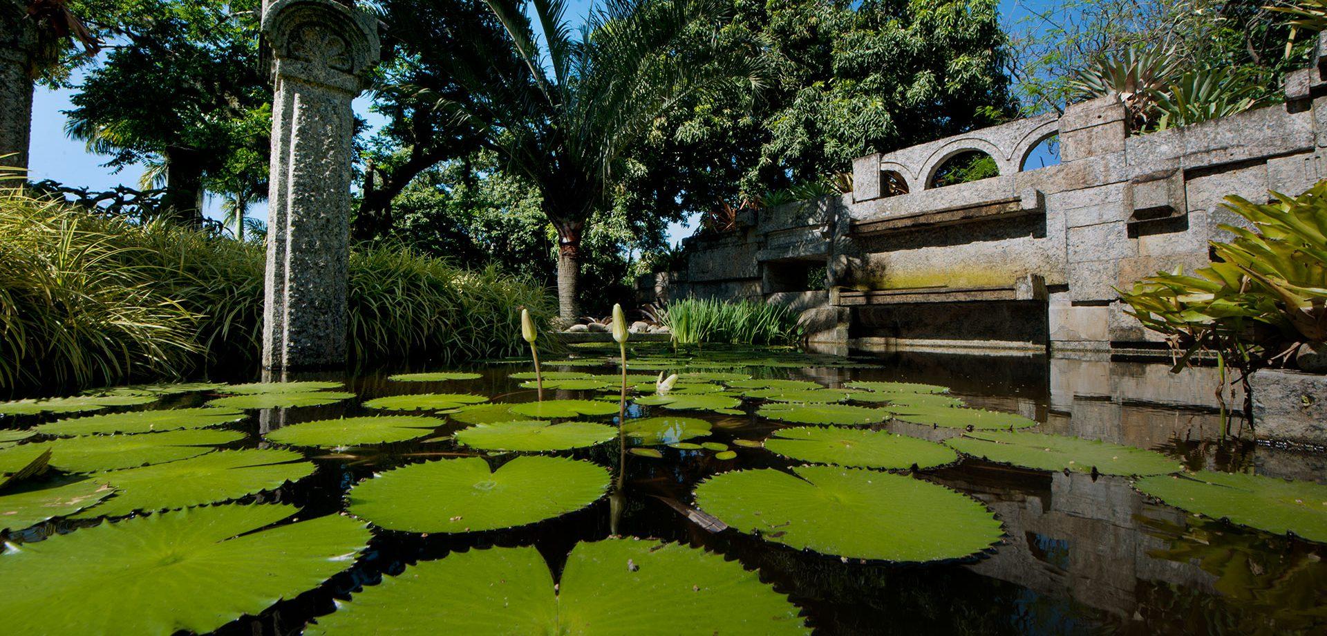 Sítio Roberto Burle Marx, giardino tropicale moderno a Rio de Janeiro #fotospettacolari